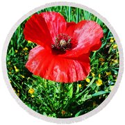 Lonely Poppy Round Beach Towel by Don Pedro De Gracia