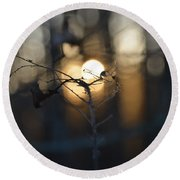 Lonely Tree Branch With Bokeh Love -georgia Round Beach Towel