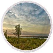Lonely Tree In Dintelse Gorzen Round Beach Towel