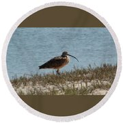 Long-billed Curlew Round Beach Towel