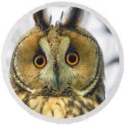 Long Eared Owl 3 Round Beach Towel