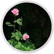 Round Beach Towel featuring the photograph Long Stemmed Rose by Jean Noren