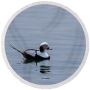 Long-tailed Duck 3 Round Beach Towel