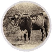 Longhorn #95 - Sepia #2 Round Beach Towel by Tim Stanley