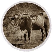 Longhorn #95 - Sepia Round Beach Towel by Tim Stanley