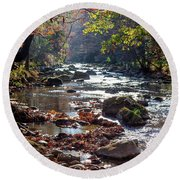 Round Beach Towel featuring the photograph Longing For Home by Karen Wiles