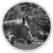 Round Beach Towel featuring the photograph Longing by Sandi OReilly