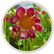 Look At Me Dahlia Round Beach Towel