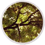 Round Beach Towel featuring the photograph Look Up by Cassandra Buckley