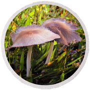 Look What I Found  In The Grass Round Beach Towel by MaryLee Parker