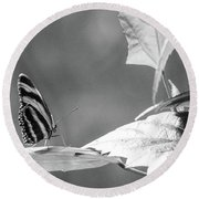 Looking Ahead Round Beach Towel