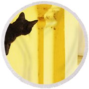 Looking For Mouse Round Beach Towel by Prakash Ghai