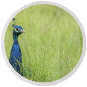 Looking Over The Grass Round Beach Towel