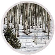Looking Through The Aspen Round Beach Towel