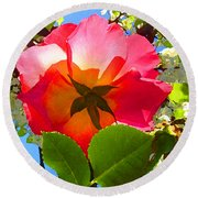 Looking Up At Rose And Tree Round Beach Towel