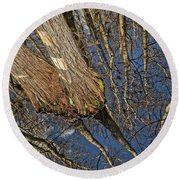 Round Beach Towel featuring the photograph Looking Up While Looking Down by Debra and Dave Vanderlaan