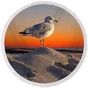 lookout Dream Round Beach Towel by  Newwwman
