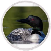 Loon Close Up Round Beach Towel