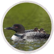 Loon Taxi Round Beach Towel