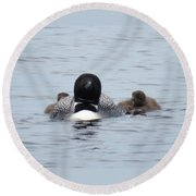 Loon With Chicks Round Beach Towel