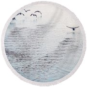 Round Beach Towel featuring the photograph Looner Liftoff by Kendall McKernon