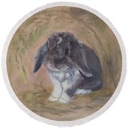 Lop Eared Rabbit- Socks Round Beach Towel