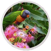 Lorikeet Round Beach Towel