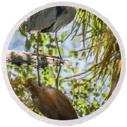 Round Beach Towel featuring the photograph Lost Lagoon Heron Reflections by Ross G Strachan
