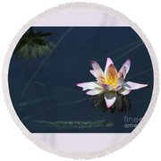 Lotus And Reflection Round Beach Towel