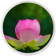 Round Beach Towel featuring the photograph Lotus Blossom 842010 by Byron Varvarigos
