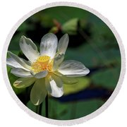 Round Beach Towel featuring the photograph Lotus Blossom by Paul Mashburn
