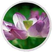 Lotus--center Of Being Vi Dl0086 Round Beach Towel by Gerry Gantt