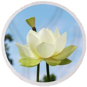 Lotus Debbie Gibson Flower Round Beach Towel
