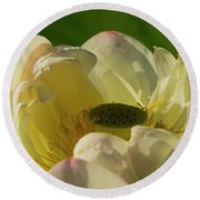 Round Beach Towel featuring the photograph Lotus Flower 4 by Buddy Scott