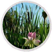 Round Beach Towel featuring the photograph Lotus Landscape 2 by Buddy Scott