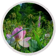 Round Beach Towel featuring the photograph Lotus Landscape 3 by Buddy Scott