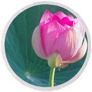 Lotus Pink Round Beach Towel