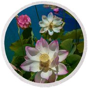 Lotus Pool Round Beach Towel