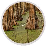 Louisiana Cajun Swamp Round Beach Towel