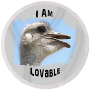 Lovable Round Beach Towel