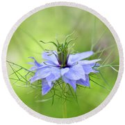 Love-in-a-mist Round Beach Towel