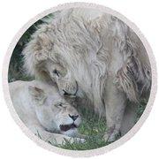 Love Lions Round Beach Towel