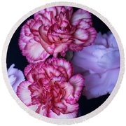 Round Beach Towel featuring the photograph Lovely Carnation Flowers by Ester Rogers