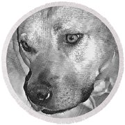Lovely Dog Round Beach Towel