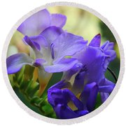 Round Beach Towel featuring the photograph Lovely Freesia's by Lance Sheridan-Peel