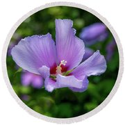Lovely Hibiscus Round Beach Towel