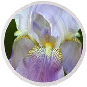 Round Beach Towel featuring the photograph Lovely In Lavender by Sheila Brown