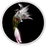 Round Beach Towel featuring the photograph Lovely Lilies Curling Grace by Felipe Adan Lerma