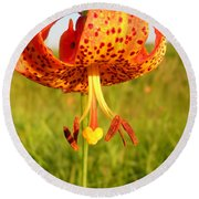Lovely Orange Spotted Tiger Lily Round Beach Towel by Kent Lorentzen