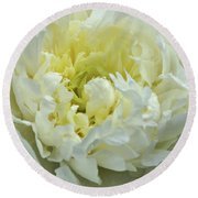 Round Beach Towel featuring the photograph Lovely Peony by Sandy Keeton